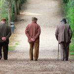 pensione al coniuge superstite