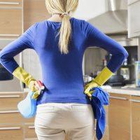 Lavoratori Domestici